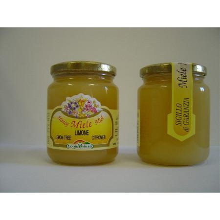 Lemon blossom honey, 500 g Best Price, shop, shopping